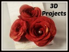 3D projects