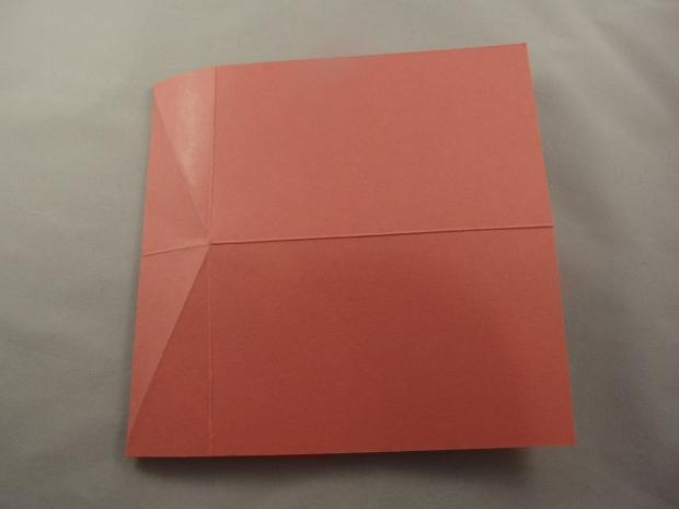 CIMG1661 - Copy